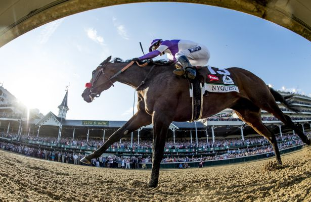 LOUISVILLE, KY - MAY 07: Nyquist #13, ridden by Mario Gutierrez, wins the Kentucky Derby on May 7, 2016 in Louisville, Kentucky. (Photo by Scott Serio/Eclipse Sportswire/Getty Images)