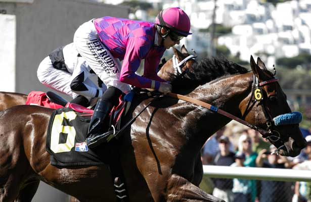 Obviously (IRE) winner of the Del Mar Mile at Del Mar Race Course in Del Mar, California on August 26, 2012.