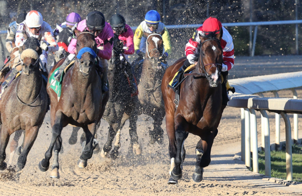 Six horses nab top votes in final 2019 Kentucky Derby Media Poll