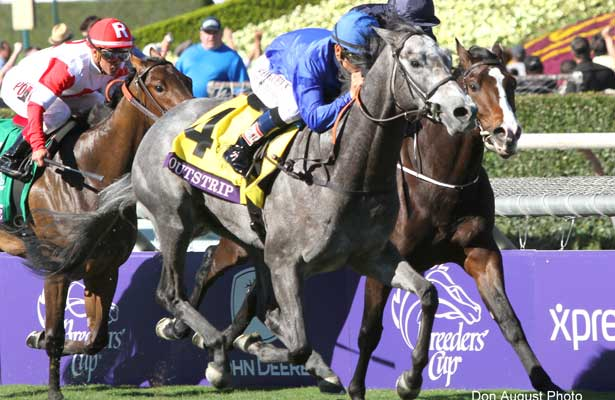 Outstrip wins 2013 Breeders' Cup Juvenile Turf.