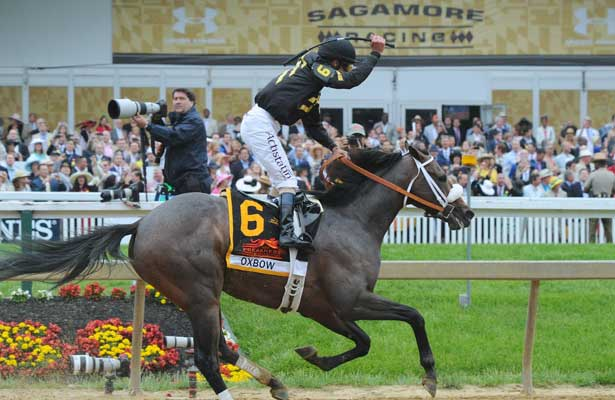 Preakness 2017: Pace Will Make This Race - Horse Racing Nation