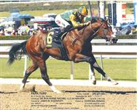 Papa Turf winning at Santa Anita Sept 28th race #4.