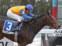 Peppi Knows takes the 2010 Whirlaway at Aqueduct
