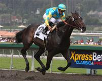 Pioneerof The Nile captures the 2009 San Felipe Stakes at Santa Anita.