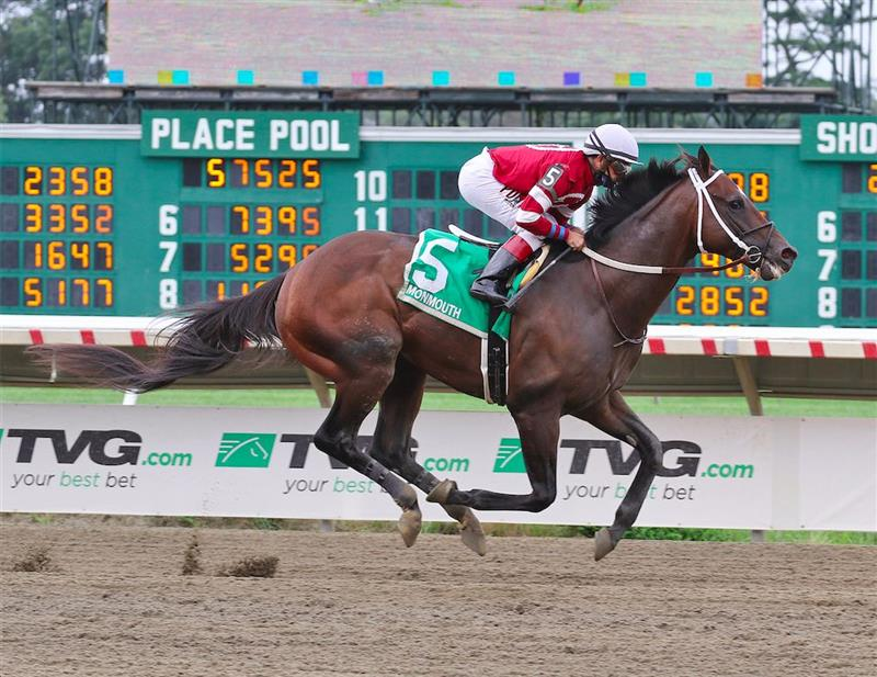 Preakness comes at perfect time for Pegasus winner Pneumatic