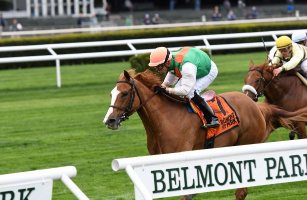 Portmagee wins 2017 License Fee