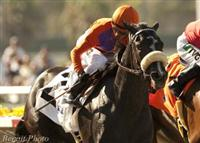 Winding Way wins the G3 Rancho Bernando Handicap