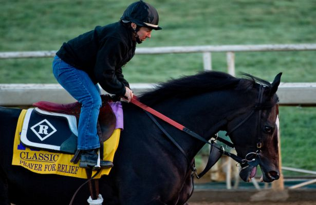 Prayer for Relief, trained by Dale Romans, exercises in preparation for the Breeders' Cup Classic at Santa Anita Race Course in Arcadia, California on October 28, 2014. Scott Serio/ESW/CSM