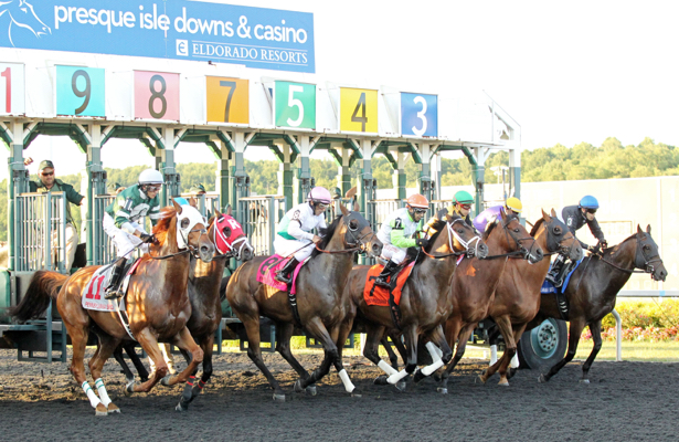 Presque Isle Downs Entries Amp Results For Wednesday 9 11 2019