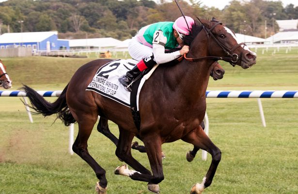 Projected wins 2017 Baltimore Washington International Turf Cup