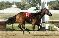 Proper Discretion wins 2017 Diana Stakes at Thistledown