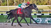 Prospective wins the Tampa Bay Derby