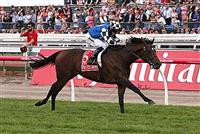 Protectionist 2