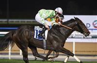 Pupil bids for success in Saturday's District One Mansions feature at Meydan Racecourse on Saturday February 25, 2017. Image: Dubai Racing Club//Andrew Watkins