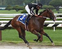 R Free Roll wins the Grade 2 Honorable Miss at Saratoga on 7/28/14.