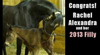 Rachel Alexandra and her 2013 filly