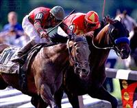 Real Quiet and Victory Gallop in the 1998 Belmont