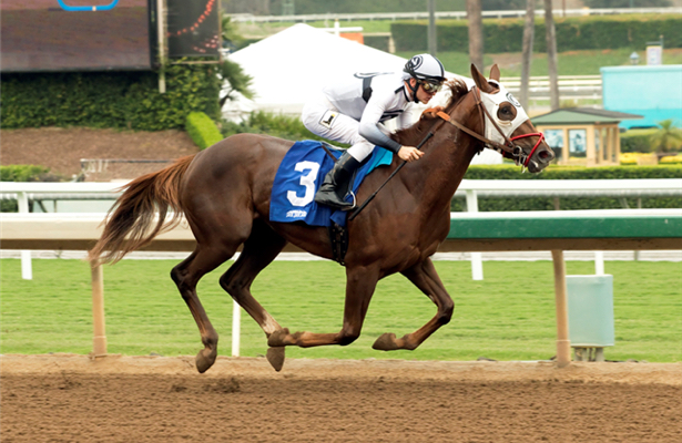Santa Anita news: Saturday's La Canada a step up for Resky Business