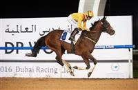 he Satish Seemar-trained Reynaldothewizard skips over the line under Richard Mullen in the 2016 Dubawi Stakes. He is bidding for a third consecutive win in the race at Meydan Racecourse on Thursday January 12, 2017.