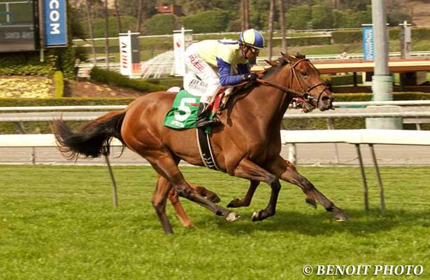 Rhagori wins U.S. debut at Santa Anita (3-7-14)
