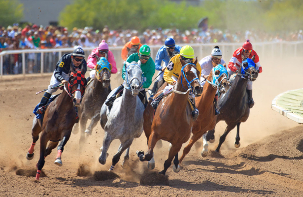 Rillito Race Track launches Equine Wellness Program for new meet