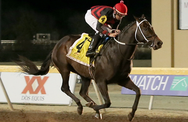 Meet the field: Closer look at the Remington Springboard Mile