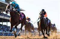 Breeders' Cup Sprint 2018: Projected field, odds