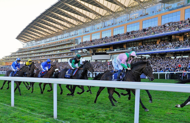 This Week in Racing: Royal Ascot's meet didn't disappoint