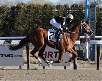Rule By Night breaks maiden at Aqueduct.