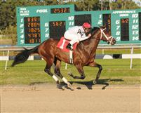 Rule captures the 2010 Sam F. Davis Stakes at Tampa Bay Downs