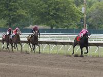 Rush Now winning the 2011 Spend A Buck Stakes