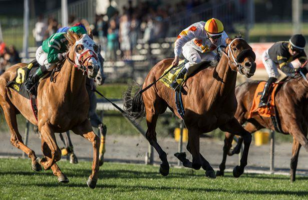 Rye rallies to win eventful running of Unusual Heat Turf Classic