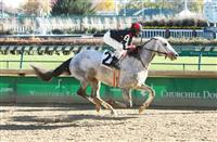 Silver Dust wins at CD (11-20-16)