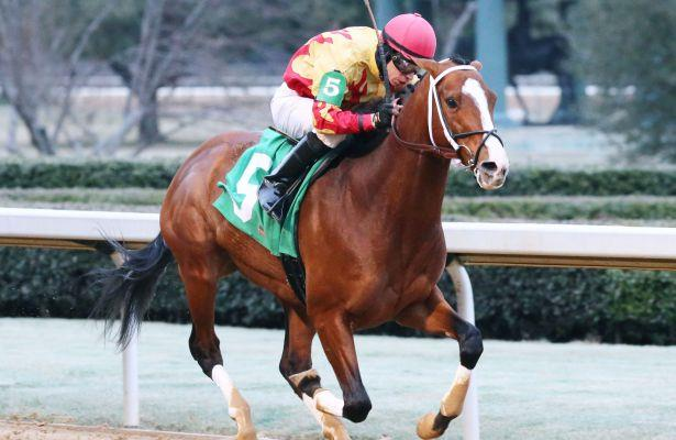 Storm Advisory runs away with King Cotton Stakes