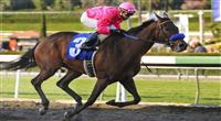 February 13, 2010.Joel Rosario, riding St. Trinians, wins the Santa Maria Handicap at Santa Anita Park, Arcadia, CA