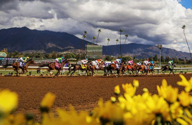 Santa Anita's Pick 6 carryover could pay $50,000! Get our ticket