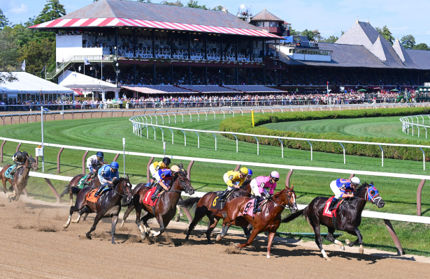 2017 Breeders Cup Free Picks