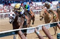 Champagne: Going deep in Wednesday's Saratoga Pick 5