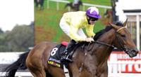 Sea The Stars storms home in the Irish Champion Stakes - 2009