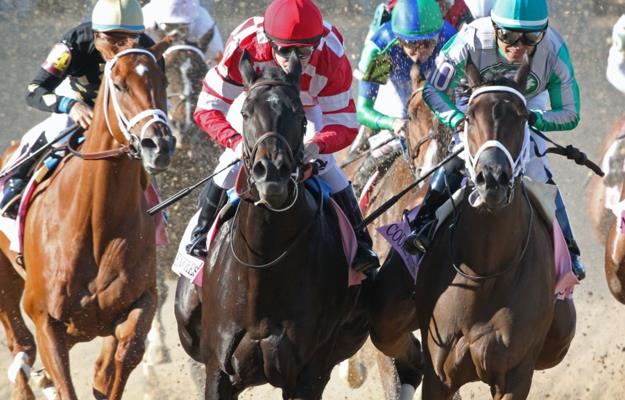 Analysis: Pace collapse possible in BC Filly & Mare Sprint