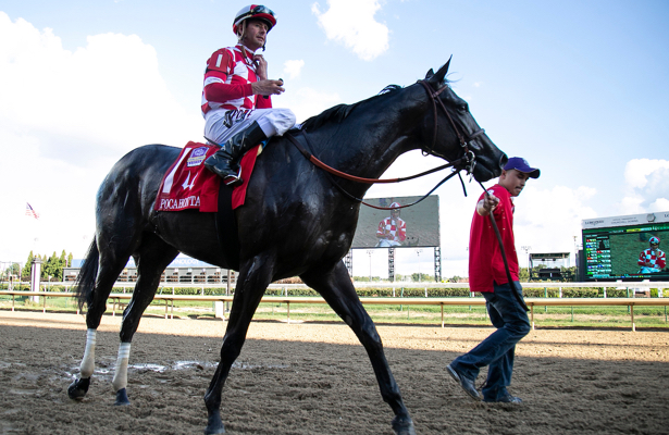 They Ll Dream Big With Breeders Cup Bound Serengeti Empress