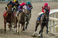 Across the Board: Analyzing the best of Saturday's stakes races