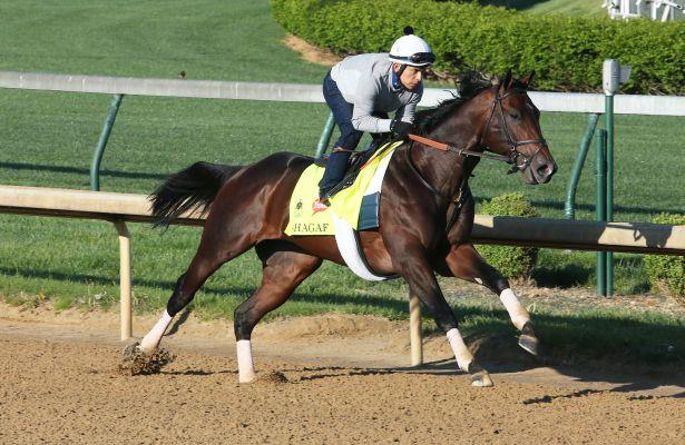 My Man Sam, Shagaf Record First Serious Kentucky Derby 2016 Works