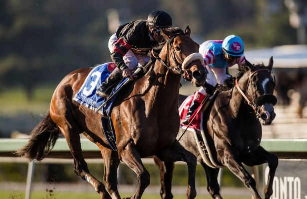 Shaman Ghost Goes West To Win The 2017 Santa Anita Handicap