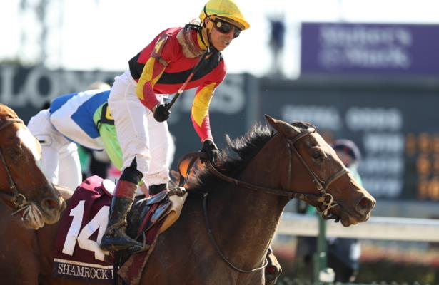Breeders' Cup winner Shamrock Rose launches season in Hurricane Bertie