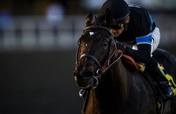 Shared Belief close 615 X 400