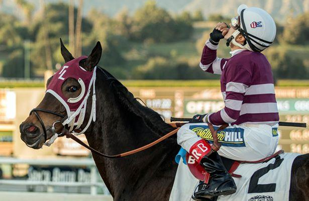 Show It N Moe It the horse to beat in Evening Jewel Stakes