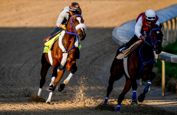 Signalman brings 'thousandaire' owner to Preakness Stakes