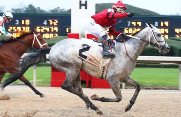 Southwest Stakes winner Silver Prospector a Derby threat again