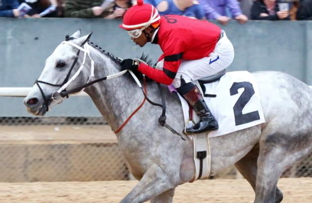 Kentucky Derby 'hope, but not a fever' in Silver Prospector's camp